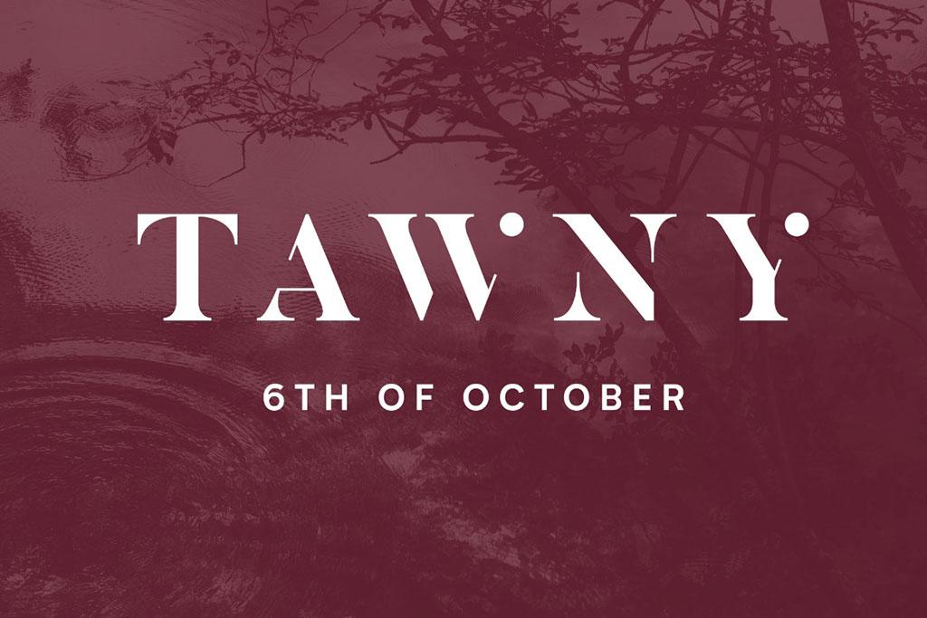 Q3 – Tawny